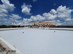 Repair of a membrane roof in Kamenskoye